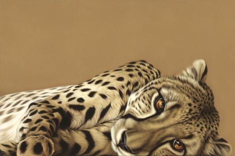 Cheetah.tif